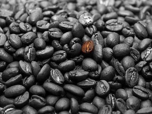 The Best  Black Coffee Beans For Delicious Drinks